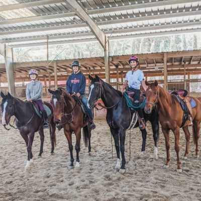NS TBs at Horse & Rider